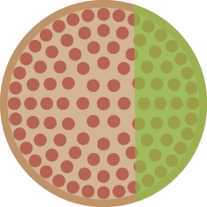 Fig.Pizza02c
