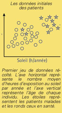 neurones-1