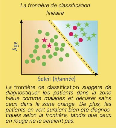 neurones-2