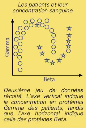 neurones-3