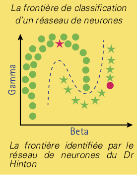 neurones-4