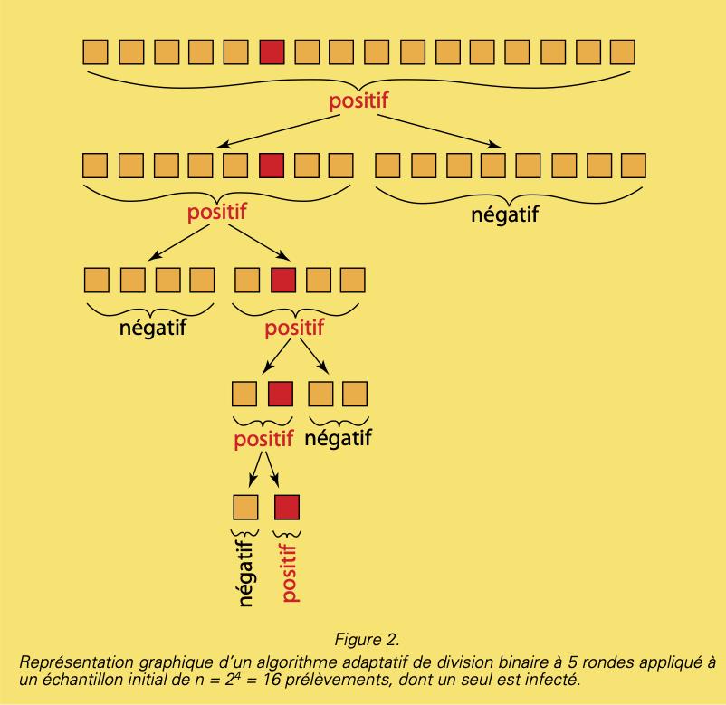 depistage-figure2