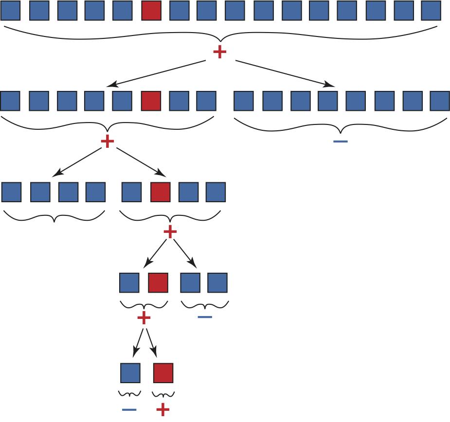 Figure 2Grafische Darstellung eines adaptiven 5-Runden- Teile-und-herrsche-Verfahren, der auf eine Anfangsprobe der Größe $n = 2^4 = 16$-Proben angewendet wird, von denen nur eine infiziert ist.